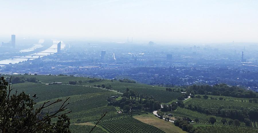 Háborús hangulatban Bécsben – hogy ott rohadjon meg az a vírus!